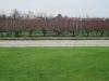 vignes-pape-clement