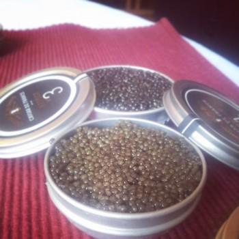 comtesse-barry-caviar-4